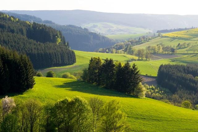 Frankenwald Header