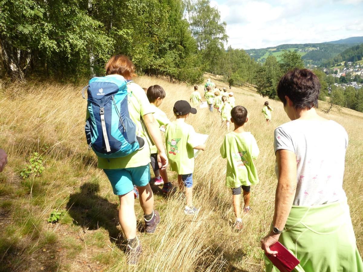 Zwoticher Waldwichtel auf Wanderung